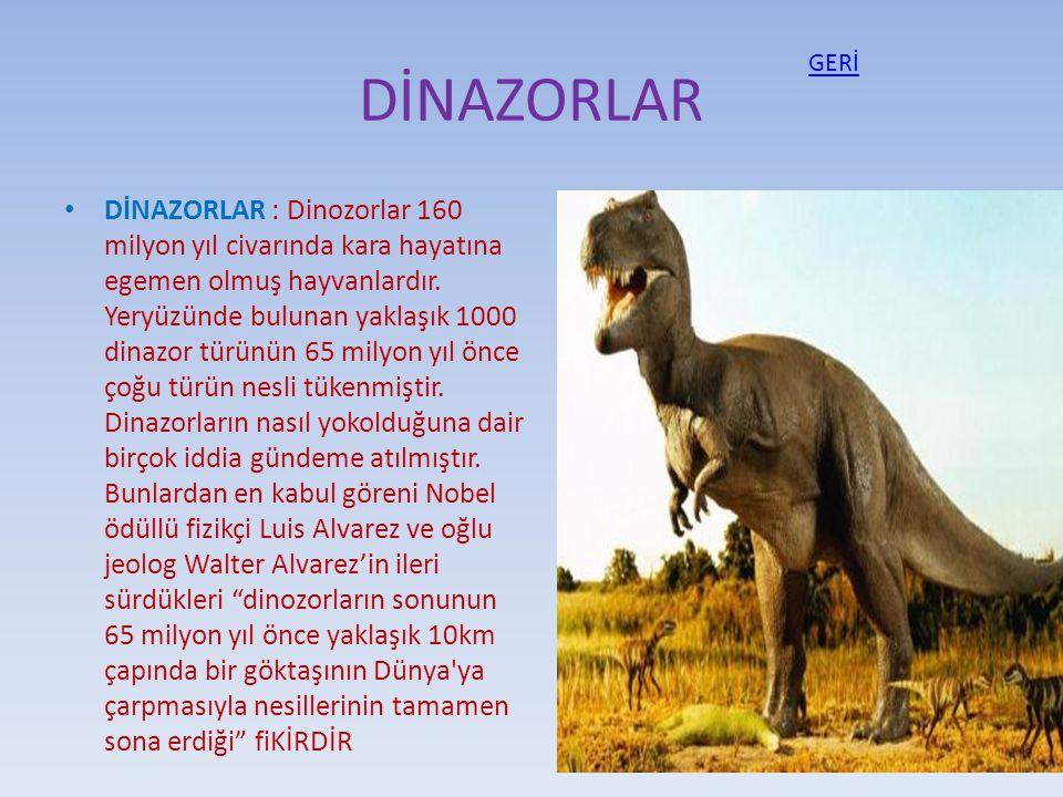 DİNAZORLAR DİNAZORLAR : Dinozorlar 160 milyon yıl civarında kara hayatına egemen olmuş hayvanlardır. Yeryüzünde bulunan yaklaşık 1000 dinazor türünün