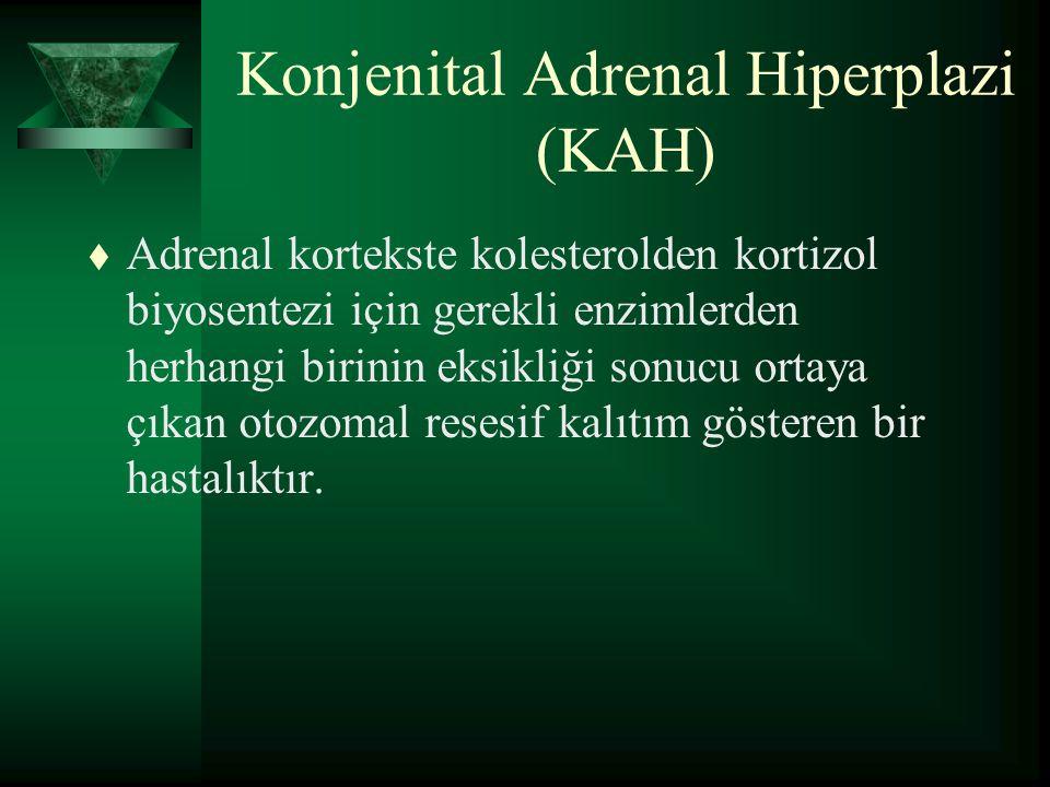 Konjenital Adrenal Hiperplazi (KAH) t Adrenal kortekste kolesterolden kortizol biyosentezi için gerekli enzimlerden herhangi birinin eksikliği sonucu