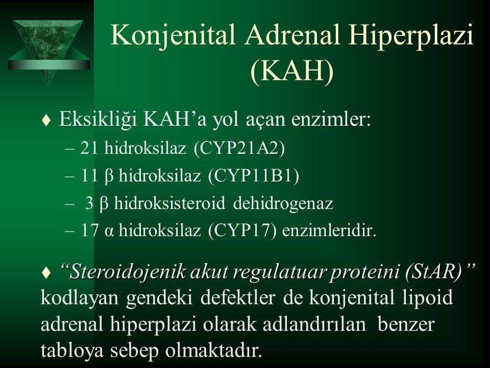 Konjenital Adrenal Hiperplazi (KAH) t Eksikliği KAH'a yol açan enzimler: –21 hidroksilaz (CYP21A2) –11 β hidroksilaz (CYP11B1) – 3 β hidroksisteroid d