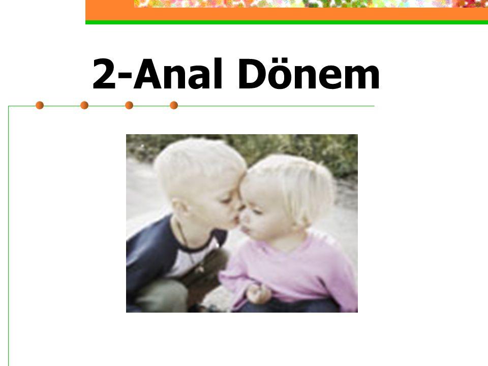 2-Anal Dönem