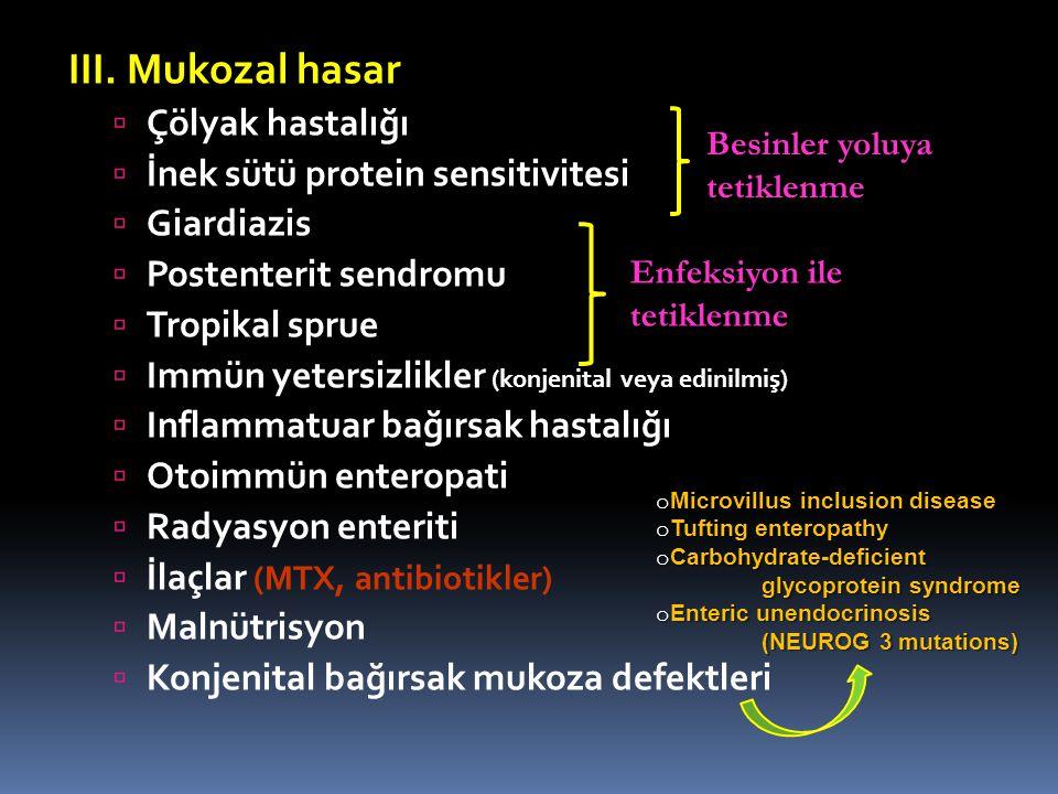 III. Mukozal hasar  Çölyak hastalığı  İnek sütü protein sensitivitesi  Giardiazis  Postenterit sendromu  Tropikal sprue  Immün yetersizlikler (k