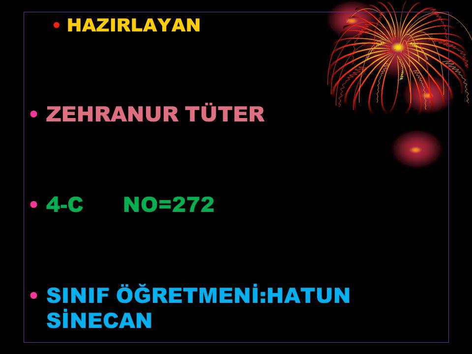 HAZIRLAYAN ZEHRANUR TÜTER 4-CNO=272 SINIF ÖĞRETMENİ:HATUN SİNECAN