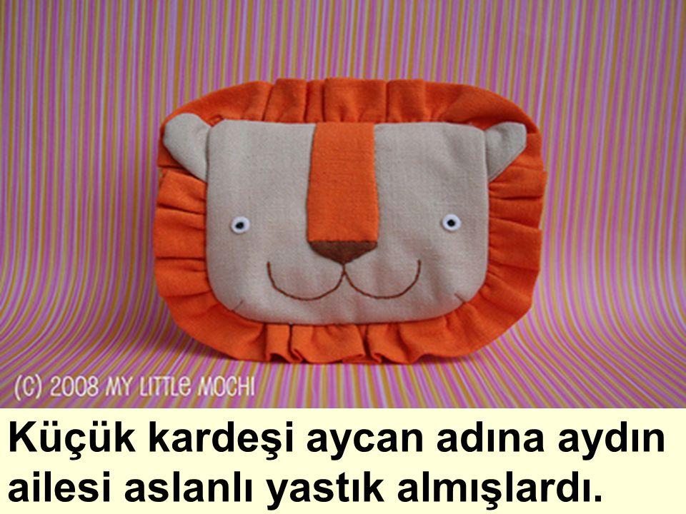 Küçük kardeşi aycan adına aydın ailesi aslanlı yastık almışlardı.