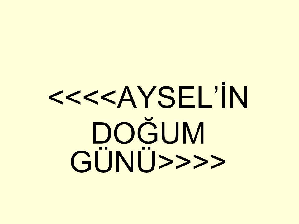 <<<<AYSEL'İN DOĞUM GÜNÜ>>>>