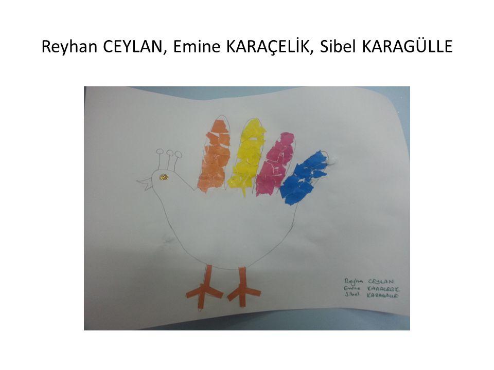 Reyhan CEYLAN, Emine KARAÇELİK, Sibel KARAGÜLLE