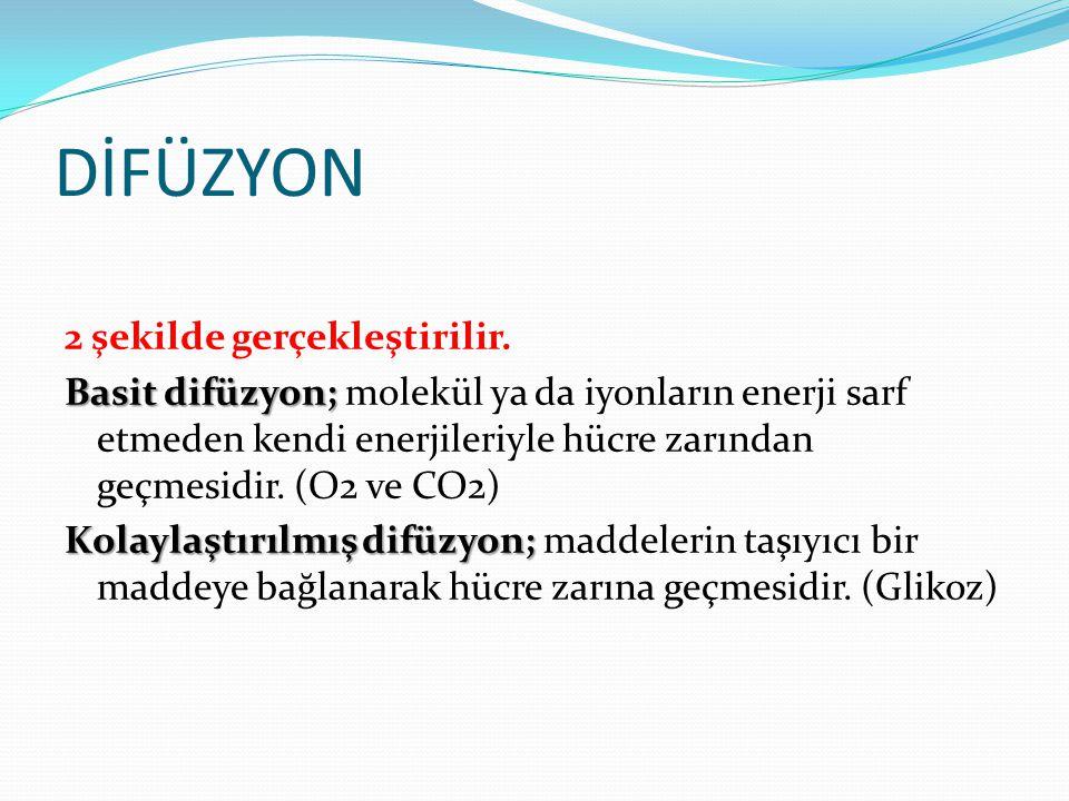 Sodyum(Na⁺) Dengesizlikleri Sodyum hücre dışı sıvıların ana katyonudur.