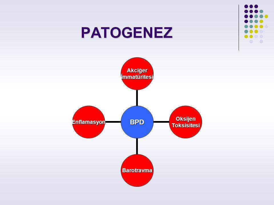 PATOGENEZ BPD Akciğerİmmatüritesi OksijenToksisitesi Barotravma Enflamasyon