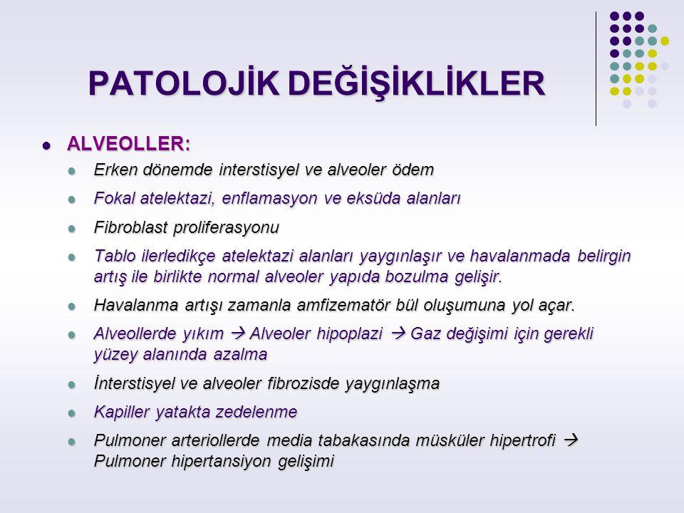 PATOLOJİK DEĞİŞİKLİKLER ALVEOLLER: ALVEOLLER: Erken dönemde interstisyel ve alveoler ödem Erken dönemde interstisyel ve alveoler ödem Fokal atelektazi