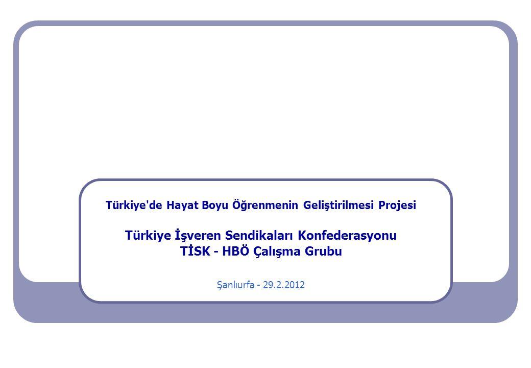 Türkiye'de Hayat Boyu Öğrenmenin Geliştirilmesi Projesi Türkiye İşveren Sendikaları Konfederasyonu TİSK - HBÖ Çalışma Grubu Şanlıurfa - 29.2.2012