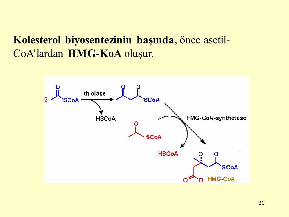 21 Kolesterol biyosentezinin başında, önce asetil- CoA'lardan HMG-KoA oluşur.