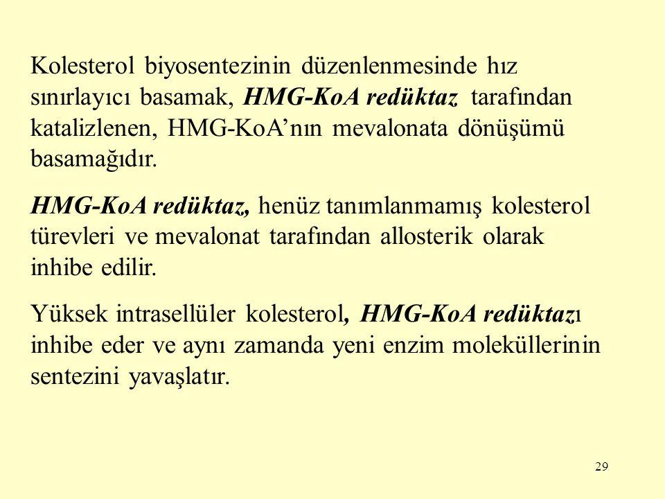 29 Kolesterol biyosentezinin düzenlenmesinde hız sınırlayıcı basamak, HMG-KoA redüktaz tarafından katalizlenen, HMG-KoA'nın mevalonata dönüşümü basama