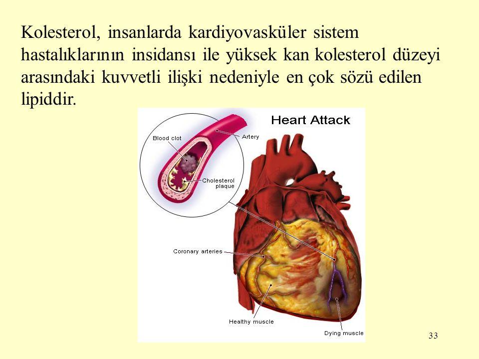33 Kolesterol, insanlarda kardiyovasküler sistem hastalıklarının insidansı ile yüksek kan kolesterol düzeyi arasındaki kuvvetli ilişki nedeniyle en ço