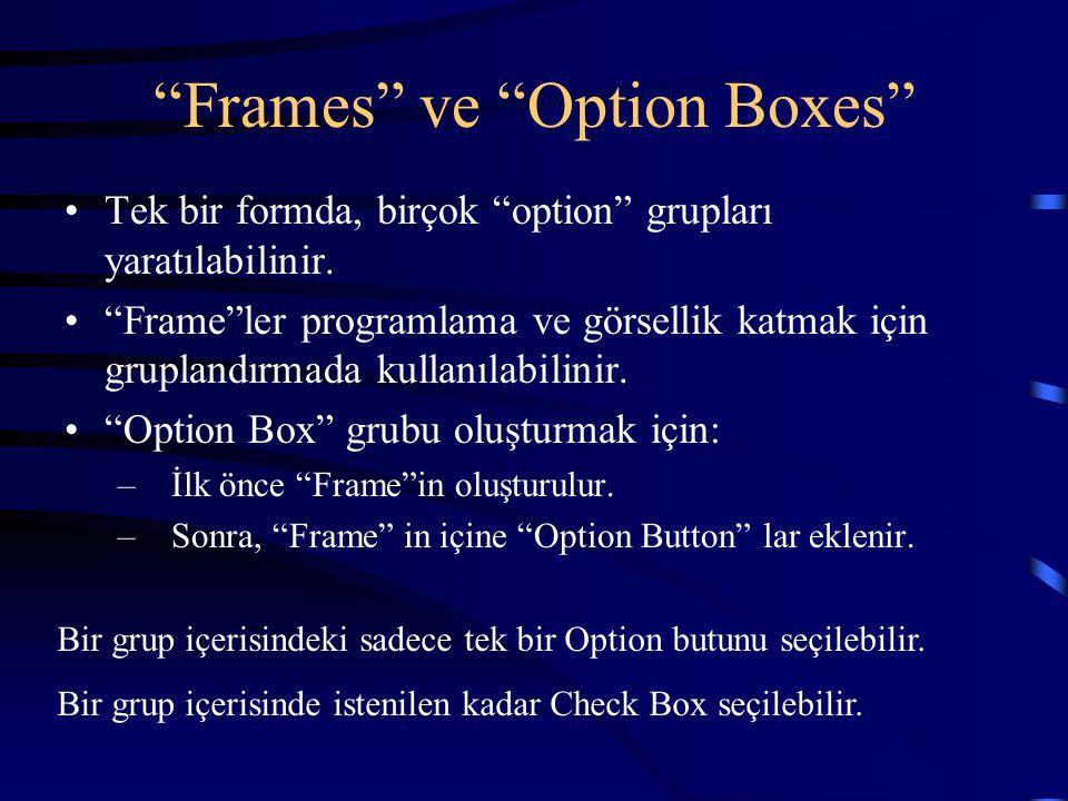 """""""Frames"""" ve """"Option Boxes"""" Tek bir formda, birçok """"option"""" grupları yaratılabilinir. """"Frame""""ler programlama ve görsellik katmak için gruplandırmada ku"""