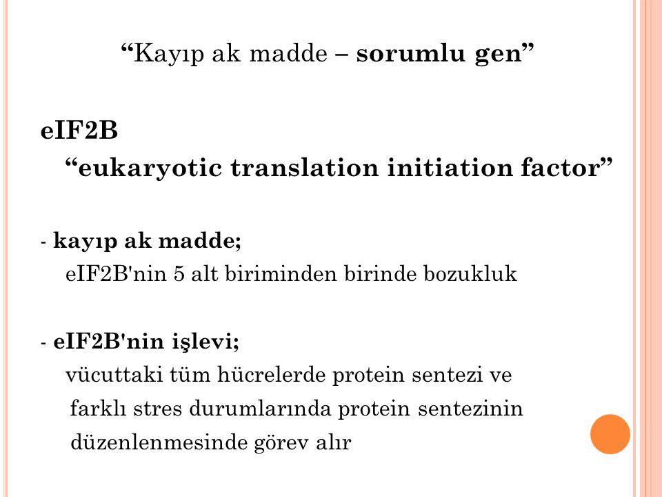 """"""" Kayıp ak madde – sorumlu gen"""" eIF2B """"eukaryotic translation initiation factor"""" - kayıp ak madde; eIF2B'nin 5 alt biriminden birinde bozukluk - eIF2B"""