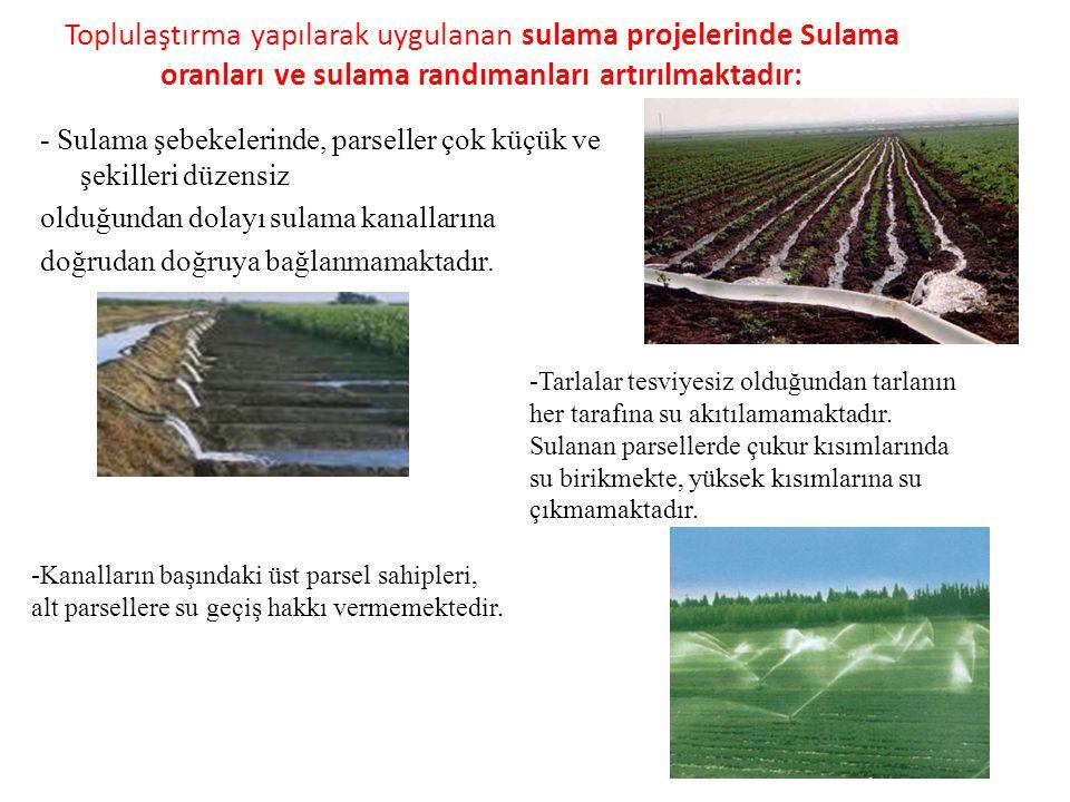Toplulaştırma yapılarak uygulanan sulama projelerinde Sulama oranları ve sulama randımanları artırılmaktadır: - Sulama şebekelerinde, parseller çok kü