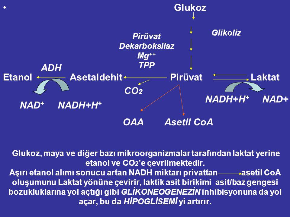 AŞIRI ETANOL ALIMI: NADH + H + miktarını artırır. pH değerlerini azaltır Laktik asidoz gelişir Böbrekler tarafından Ürik asit atılımını inhibe eder. B