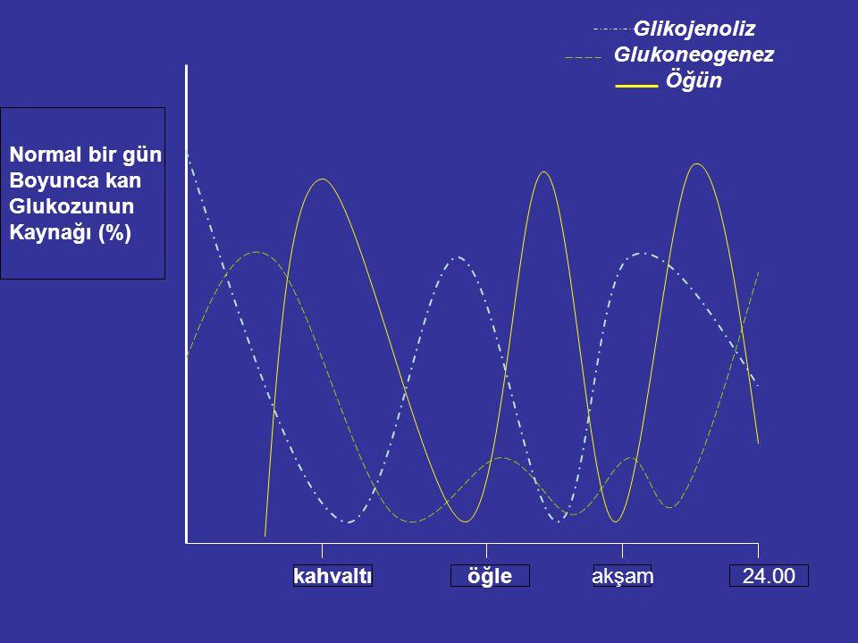 Yemediğimiz sürece (uykuda iken) glukoz DE NOVO olarak sentez edilir.Metabolizma sırasında oluşan küçük moleküllerin uzaklaştırılması ve bu küçük öncü