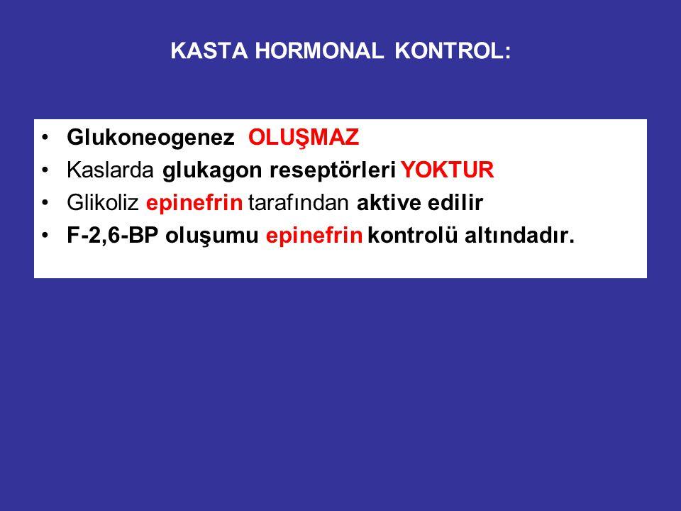 HİPOGLİSEMİK ve HİPERGLİSEMİK koşularda karaciğerdeki değişikliklerin kıyaslanması: Hipoglisemik koşullar: F-2,6-BP azalır, allosterik aktivasyon (PFK