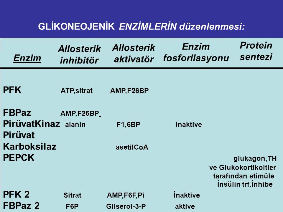 Kc'de Glukagon-cAMP etkilerinin ÖZETİ  Glukoneogenezis stimule edilir.  Glikolizis inhibe edilir.  Glikojen yıkımı stimule edilir.  Glikojen sente