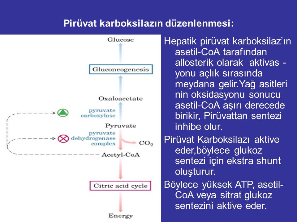 GLİKONEOJENİK ENZİMLERİN düzenlenmesi: PFK ATP,sitrat AMP,F26BP FBPaz AMP,F26BP PirüvatKinaz alanin F1,6BP inaktive Pirüvat Karboksilaz asetilCoA PEPC