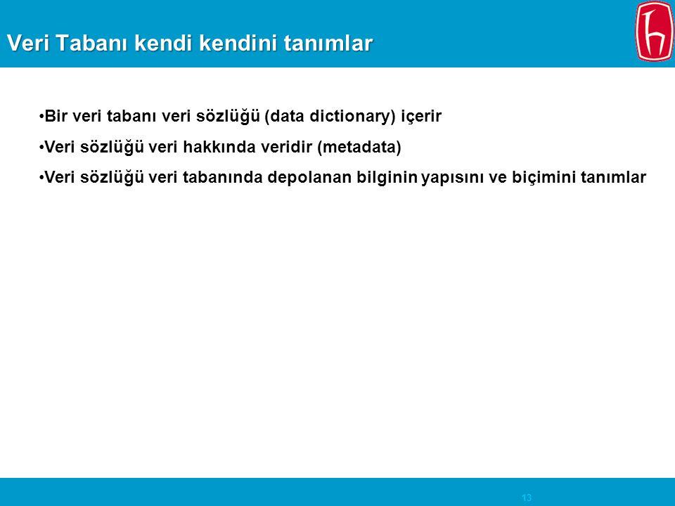 13 Veri Tabanı kendi kendini tanımlar Bir veri tabanı veri sözlüğü (data dictionary) içerir Veri sözlüğü veri hakkında veridir (metadata) Veri sözlüğü