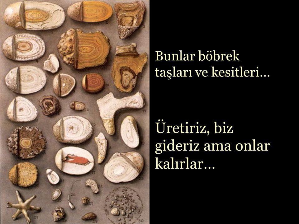 Bazı taşları da biz üretiriz, kendi bedenimizde…