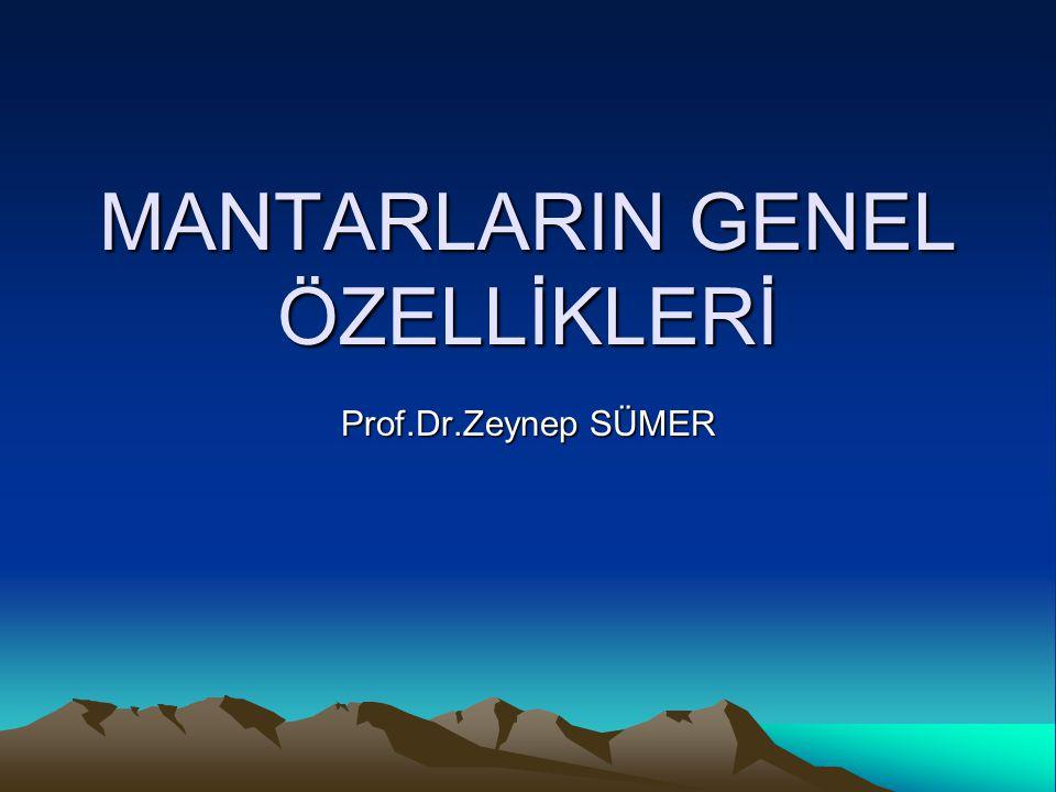 MANTARLARIN GENEL ÖZELLİKLERİ Prof.Dr.Zeynep SÜMER