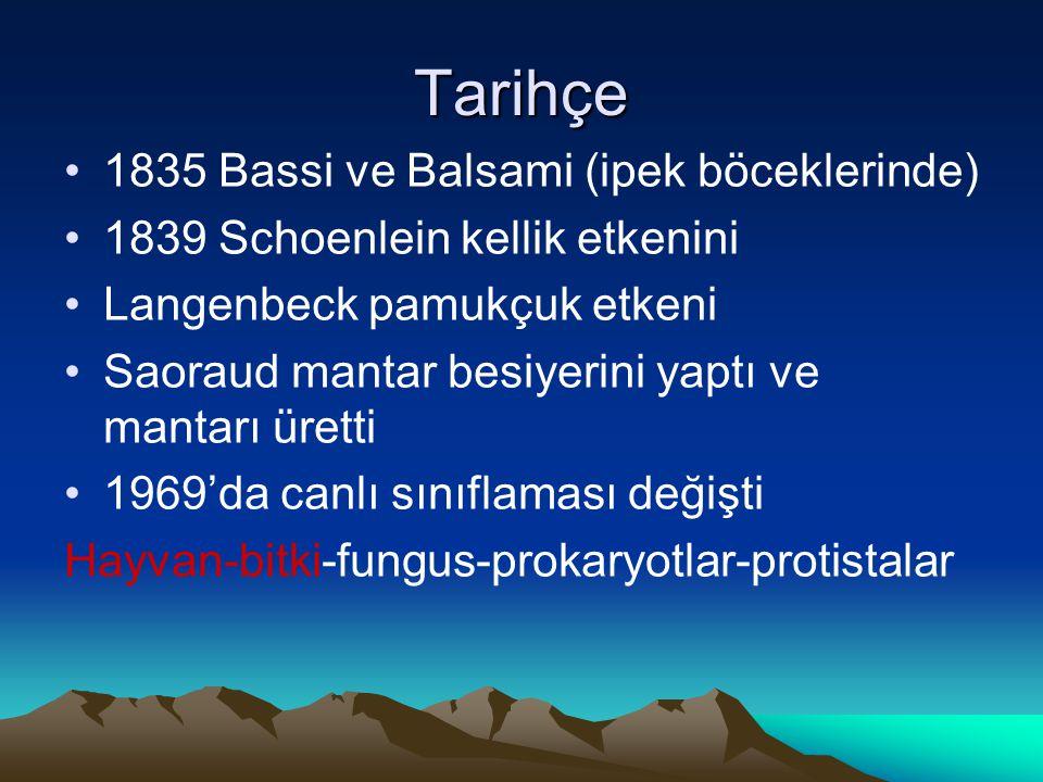 Tarihçe 1835 Bassi ve Balsami (ipek böceklerinde) 1839 Schoenlein kellik etkenini Langenbeck pamukçuk etkeni Saoraud mantar besiyerini yaptı ve mantar