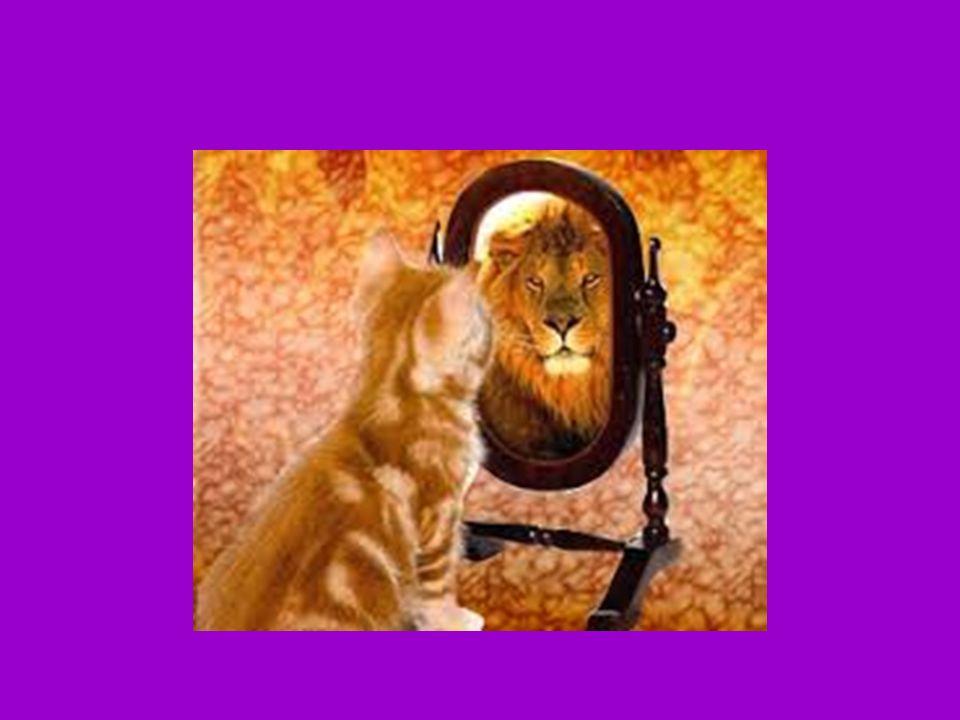 Hoşgörü Alçakgönüllülüğün Kardeşidir Tevazu Hoşgörü Yeteneği Kazandırır Tevazu Hoşgörü Yeteneği Kazandırır