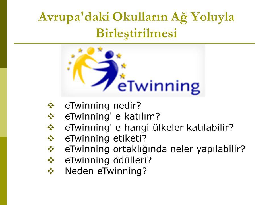 Avrupa daki Okulların Ağ Yoluyla Birleştirilmesi  eTwinning nedir.