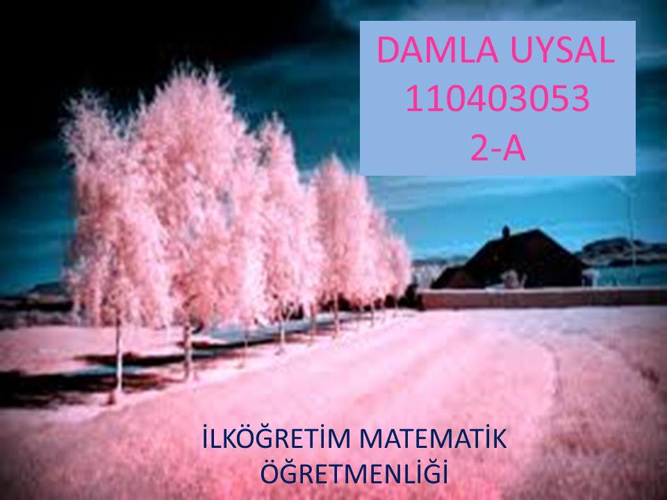 DAMLA UYSAL 110403053 2-A İLKÖĞRETİM MATEMATİK ÖĞRETMENLİĞİ