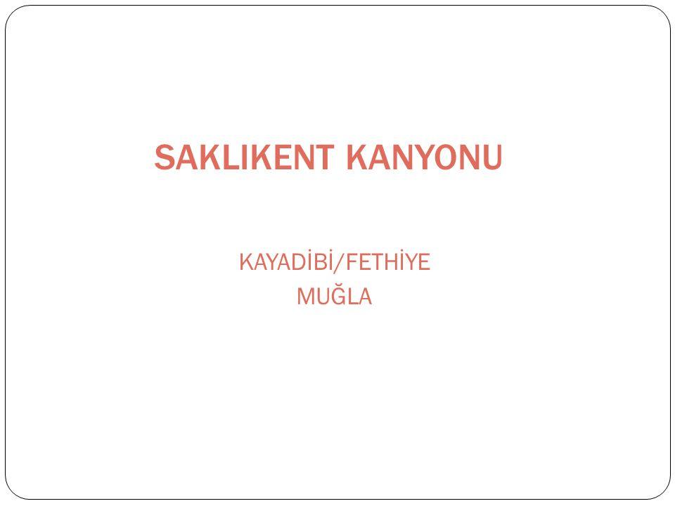 SAKLIKENT KANYONU KAYADİBİ/FETHİYE MUĞLA