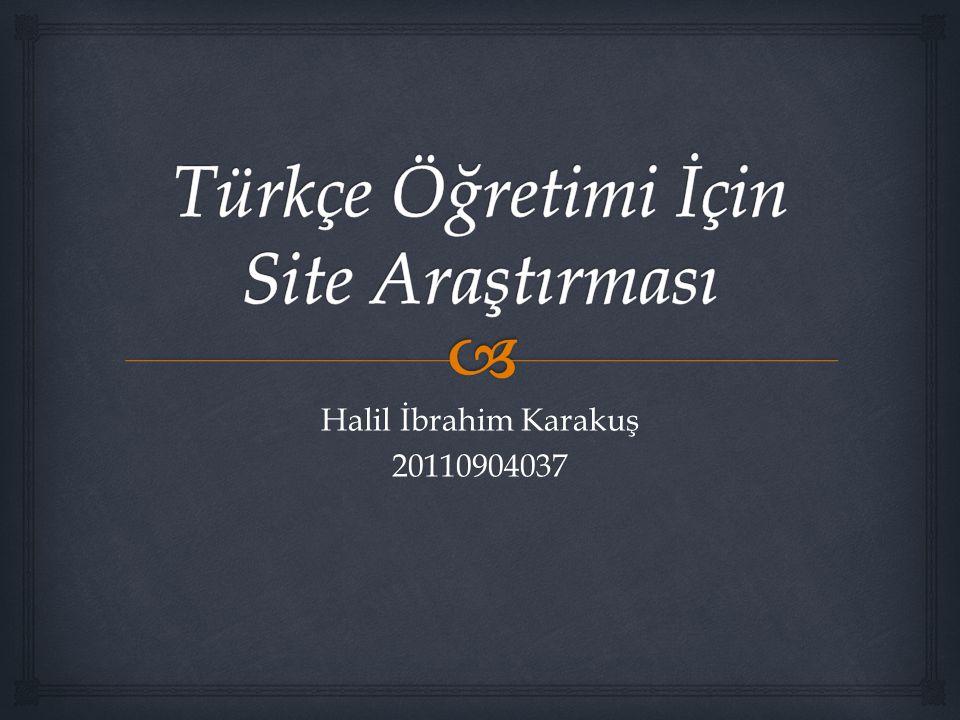 Halil İbrahim Karakuş 20110904037