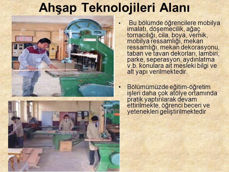 Ahşap Teknolojileri Alanı Bu bölümde öğrencilere mobilya imalatı, döşemecilik, ağaç tornacılığı, cila, boya, vernik, mobilya ressamlığı, mekan ressaml