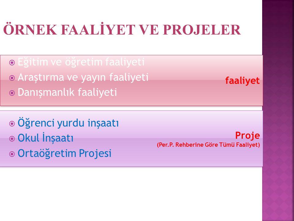 Proje (Per.P. Rehberine Göre Tümü Faaliyet) Proje (Per.P. Rehberine Göre Tümü Faaliyet) faaliyet  Eğitim ve öğretim faaliyeti  Araştırma ve yayın fa