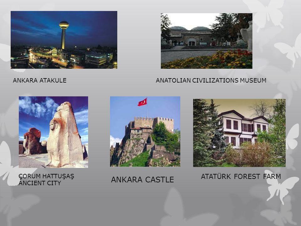 ANKARA ATAKULEANATOLIAN CIVILIZATIONS MUSEUM ÇORUM HATTUŞAŞ ANCIENT CITY ANKARA CASTLE ATATÜRK FOREST FARM