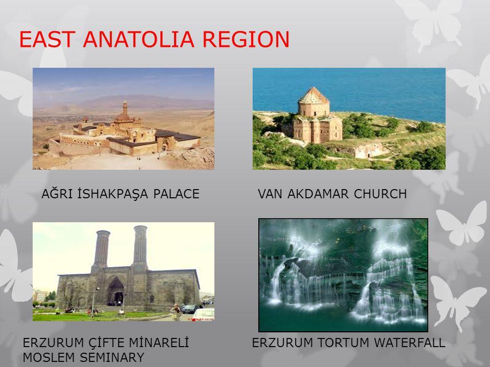 EAST ANATOLIA REGION AĞRI İSHAKPAŞA PALACEVAN AKDAMAR CHURCH ERZURUM ÇİFTE MİNARELİ MOSLEM SEMINARY ERZURUM TORTUM WATERFALL