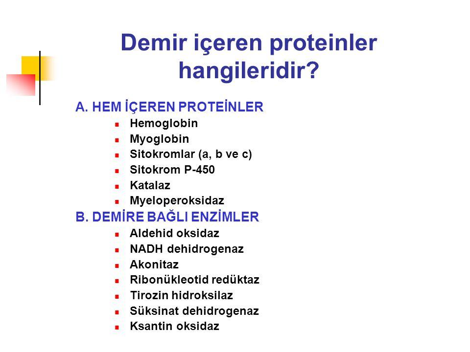 Demir içeren proteinler hangileridir? A. HEM İÇEREN PROTEİNLER Hemoglobin Myoglobin Sitokromlar (a, b ve c) Sitokrom P-450 Katalaz Myeloperoksidaz B.
