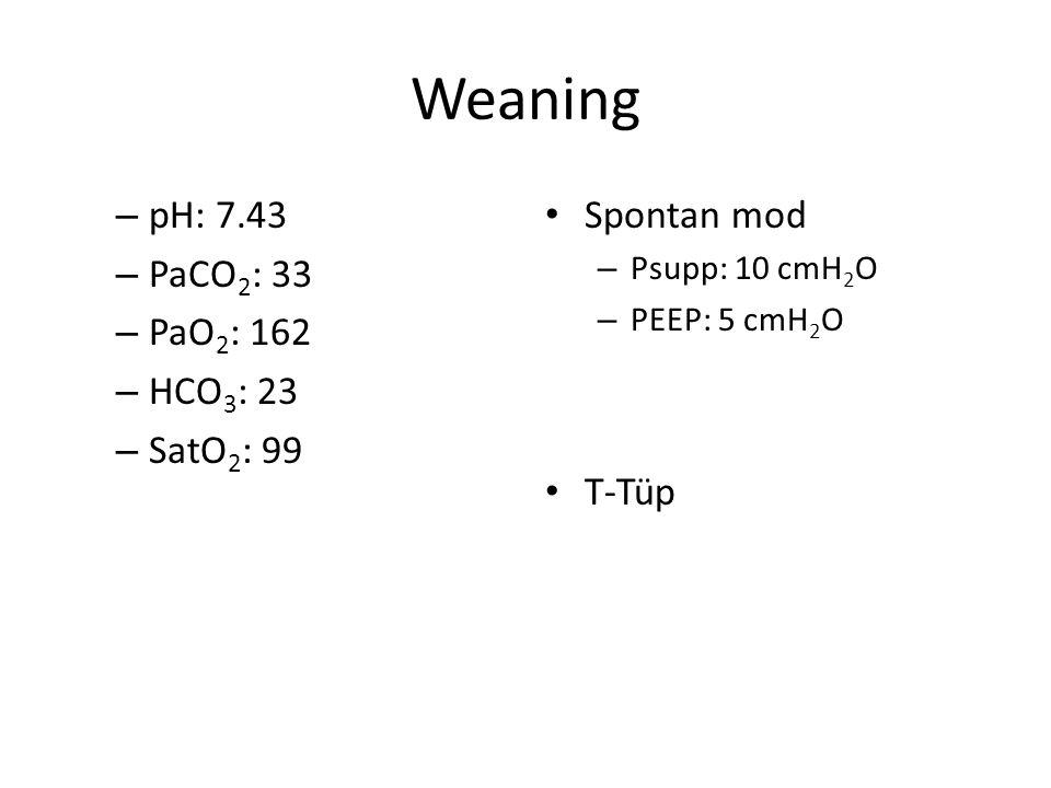Weaning Spontan mod – Psupp: 10 cmH 2 O – PEEP: 5 cmH 2 O T-Tüp – pH: 7.43 – PaCO 2 : 33 – PaO 2 : 162 – HCO 3 : 23 – SatO 2 : 99