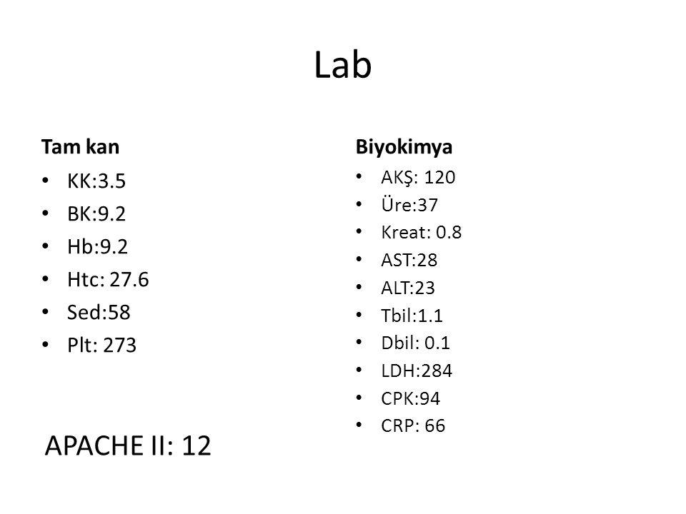 Lab Tam kan KK:3.5 BK:9.2 Hb:9.2 Htc: 27.6 Sed:58 Plt: 273 Biyokimya AKŞ: 120 Üre:37 Kreat: 0.8 AST:28 ALT:23 Tbil:1.1 Dbil: 0.1 LDH:284 CPK:94 CRP: 6