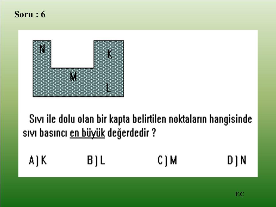 F.Ç Soru : 6