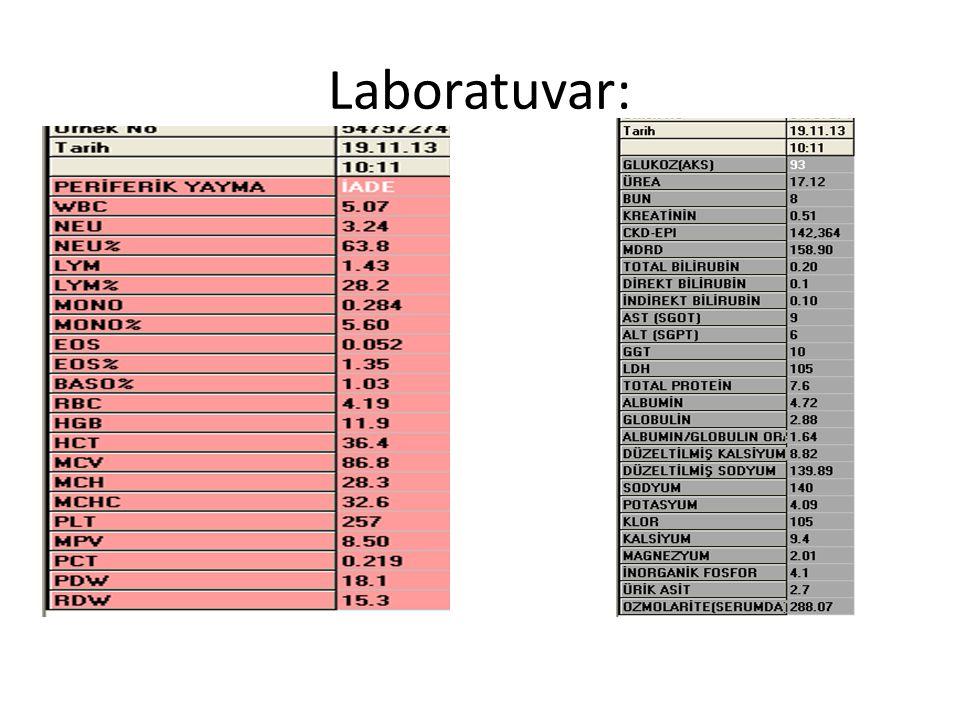 Laboratuvar: