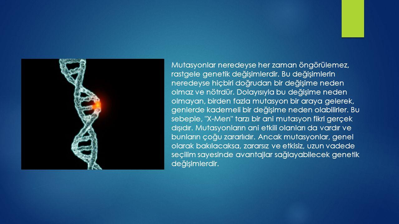 Mutasyonlar neredeyse her zaman öngörülemez, rastgele genetik değişimlerdir. Bu değişimlerin neredeyse hiçbiri doğrudan bir değişime neden olmaz ve nö