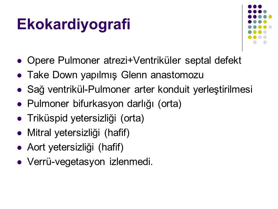 Ekokardiyografi Opere Pulmoner atrezi+Ventriküler septal defekt Take Down yapılmış Glenn anastomozu Sağ ventrikül-Pulmoner arter konduit yerleştirilmesi Pulmoner bifurkasyon darlığı (orta) Triküspid yetersizliği (orta) Mitral yetersizliği (hafif) Aort yetersizliği (hafif) Verrü-vegetasyon izlenmedi.