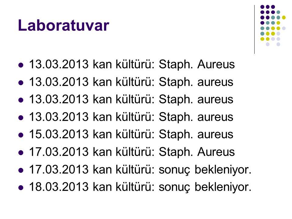 Laboratuvar 13.03.2013 kan kültürü: Staph. Aureus 13.03.2013 kan kültürü: Staph.