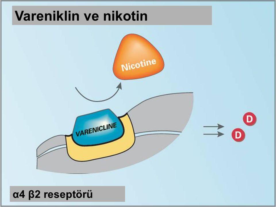 Vareniklin ve nikotin