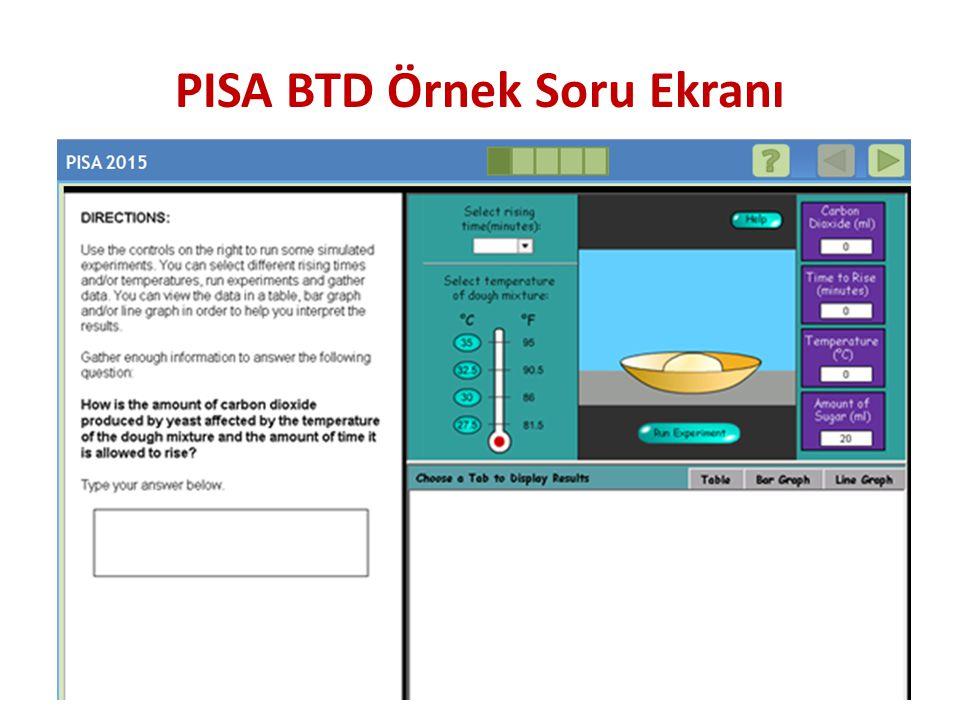 PISA BTD Örnek Soru Ekranı