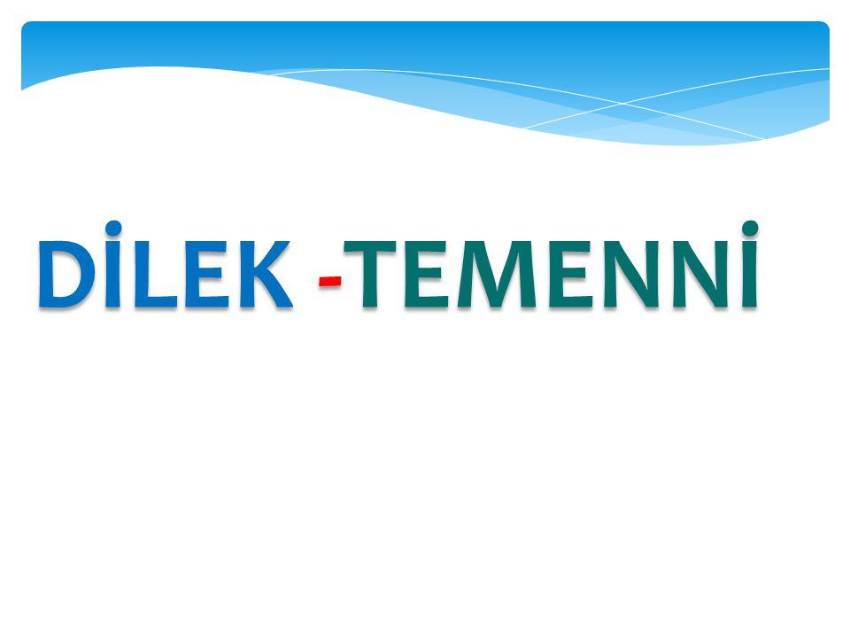 DİLEK -TEMENNİ