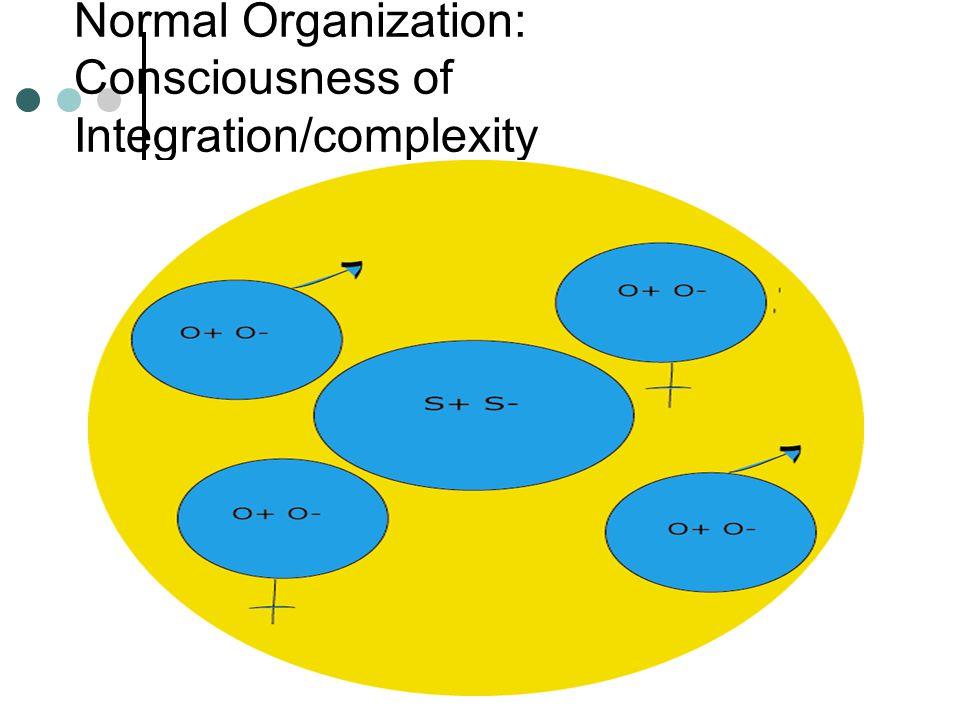 NESNE İLİŞKİSİ TEORİSİNİN KAYNAKLARI Nesne İlişkisi Teorisi Bilişsel Şemalar Bağlanma Teorisi