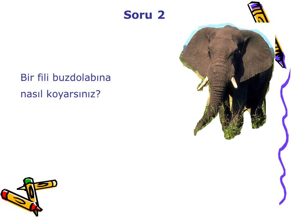 Soru 2 Bir fili buzdolabına nasıl koyarsınız?